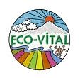 Logotyp Eco-Vital
