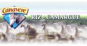 Riz Canavere