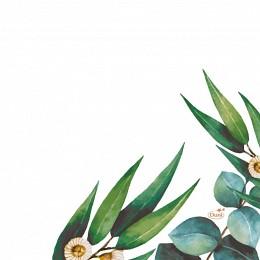 Bild på Duni Servett Eucalyptus 33x33cm 20 p