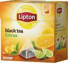 Lipton Te Citrus Pyramid 20 p