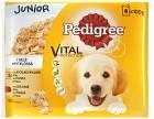 Pedigree Junior Kyckling/Oxkött 4 P
