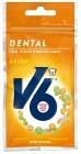 V6 Dental Melon 30 g