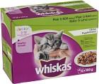 Whiskas Junior Fisk/Kött i Gelé 12-pack